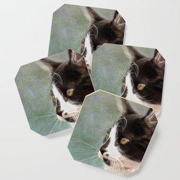 The Ships Cat Coaster