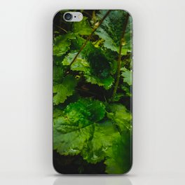 Wet Greens iPhone Skin