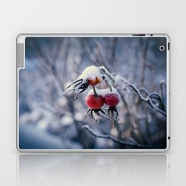 Rose hips and snow Laptop & iPad Skin