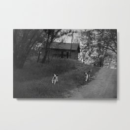 dogtown Metal Print
