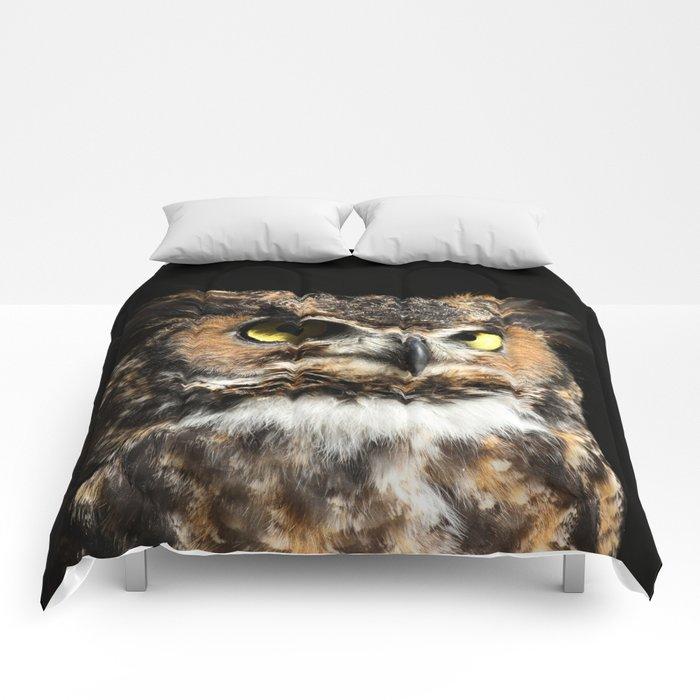 In his domain Comforters