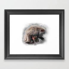 Baby Snow Monkey Framed Art Print