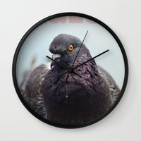 pigeon Wall Clocks featuring Pigeon by PKennyPhoto