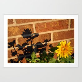 My Sunflower, Julia #3 Art Print