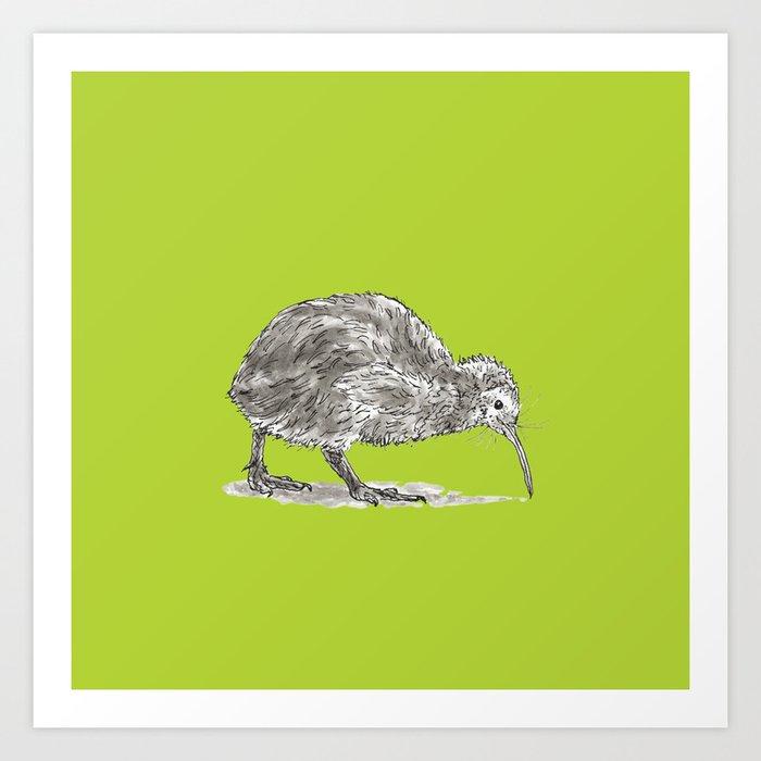 Kiwi Bird Art Print