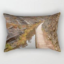 Paw Paw Boardwalk Trail Rectangular Pillow