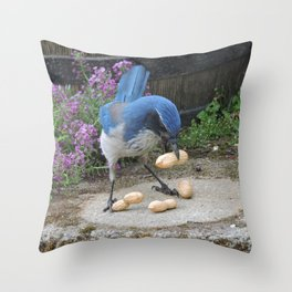 Jay Weighs the Options Throw Pillow