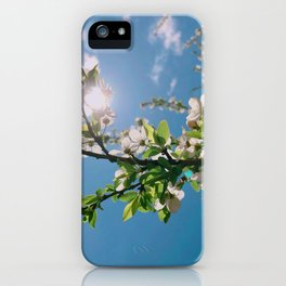 this colors --- love iPhone Case