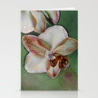 orchid Stationery Cards featuring Orchid by LoRo  Art & Pictures