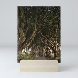 Row of Trees (Dark Hedges in Northern Ireland) Mini Art Print