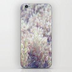 17 Sespe Grass iPhone & iPod Skin