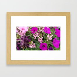 Purple Blend Framed Art Print