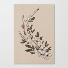 Floral Antler Canvas Print