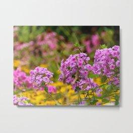 Pretty Pink Flowers in the Golden Garden Metal Print