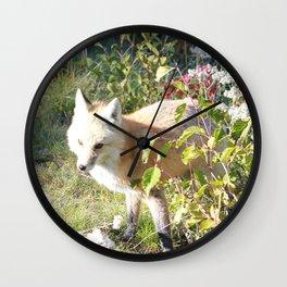 Rainier Fox Wall Clock