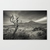 celtic Canvas Prints featuring Celtic by Miguel Cardoso