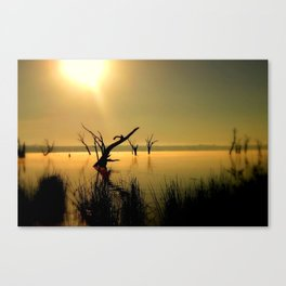 Sun Worshipper  Canvas Print