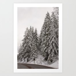 Winter Road - Carol Highsmith Art Print