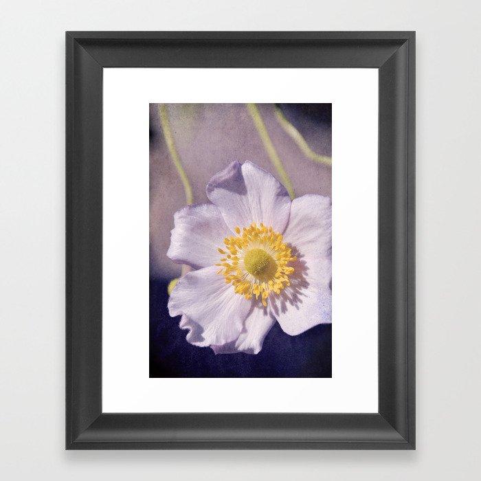 Anemone love III Framed Art Print