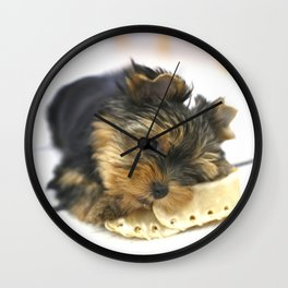 Puppy And the First Chewing Bone Yorkshireterrier #decor #society6 Wall Clock