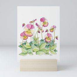 Pink Pansies, Illustration Mini Art Print