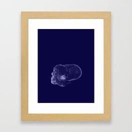 Galaxy Bobtail Squid Framed Art Print