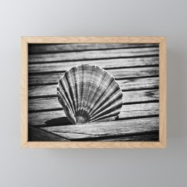 Scallop Shell and Timber Framed Mini Art Print