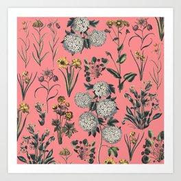 Drawing Flowers in Pink Art Print