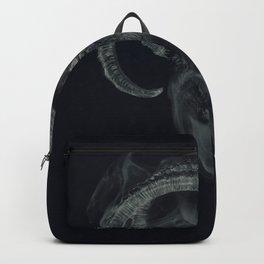 BlackPhillip /Reborn Backpack