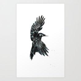 Crow 2 Art Print