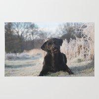 labrador Area & Throw Rugs featuring Black Labrador    by Simon's Photography