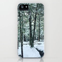 Spring Snow iPhone Case