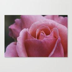Pretty Petals  Canvas Print