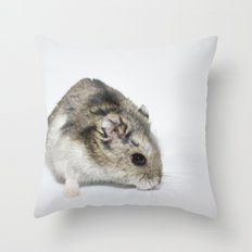 cheesecake (my hamster)  Throw Pillow