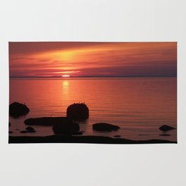 Peaceful Reflections of Nature at Dusk Rug