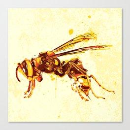 Hornet Canvas Print