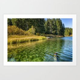 Jewel Like Tones of Clear Lake Art Print