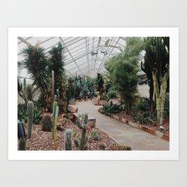 Rawlings Conservatory Art Print