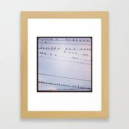 The birds wait Framed Art Print