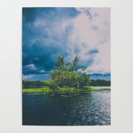 tree island on a stormy lake Poster
