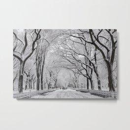 Poet's Walk, Winter Metal Print