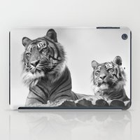 tigers iPad Cases featuring Tigers two by Stephie Butler Photography