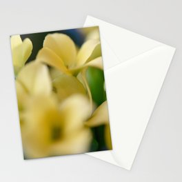 Hug from Afar Stationery Cards