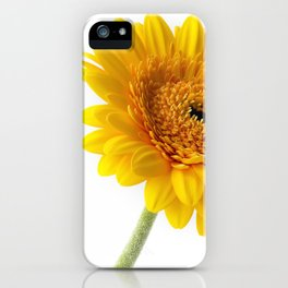 Yellow Gerbera iPhone Case