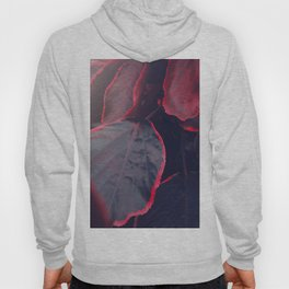 Sensual Red & Dark Purple Leaves Abstract Photography Patterns In Nature Hoody