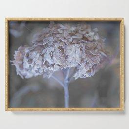 Frost Petals Of Hydrangea #decor buyart #society6 Serving Tray