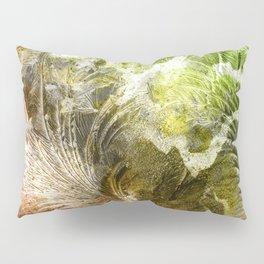 γ Gruis Pillow Sham