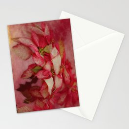 Peppermint Candy Colored Poinsettias Digital Art Stationery Cards