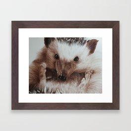 Juniper Framed Art Print