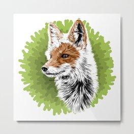 Fox - Zorro Metal Print